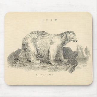 Classic Zoological Etching - Polar Bear Mouse Pad