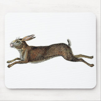 Classic Zoological Etching - Rabbit Mouse Pad