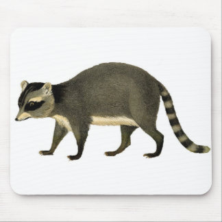 Classic Zoological Etching - Raccoon Mouse Pad