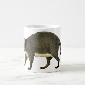 Classic Zoological Etching - Raccoon Classic White Coffee Mug