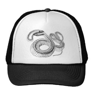 Classic Zoological Etching - Snake Skelton Trucker Hat