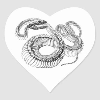 Classic Zoological Etching - Snake Skelton Heart Sticker