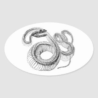 Classic Zoological Etching - Snake Skelton Oval Sticker