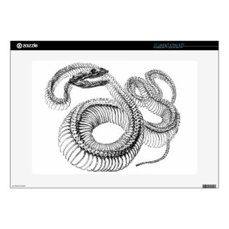 "Classic Zoological Etching - Snake Skelton Skin For 15"" Laptop"