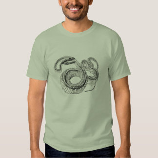 Classic Zoological Etching - Snake Skelton T-shirt