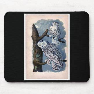 Classic Zoological Etching - Snowy Owl Mouse Pad