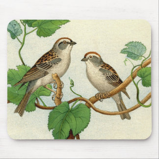 Classic Zoological Etching - Sparrow Mouse Pad