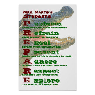 Classroom Rules / Guidelines Poster