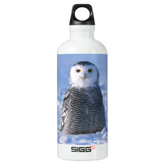 Classy Arctic Winter Snowy Owl Photo Designed Water Bottle