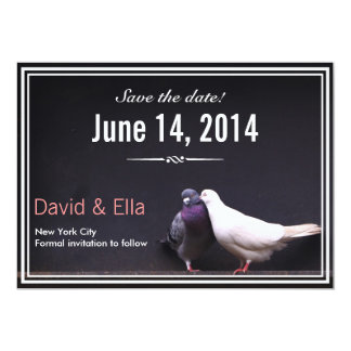 Classy Love Birds Save the Date Announcement