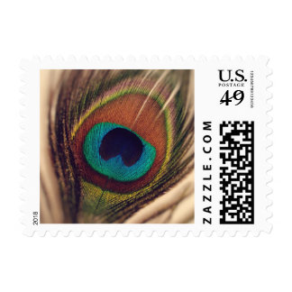 Classy peacock feather photo image wedding party stamp