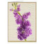 Classy Purple Gillyflower Greeting Card