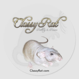 Classy Rat Rattery & Rescue Fancy Exotic Pet Rats Classic Round Sticker