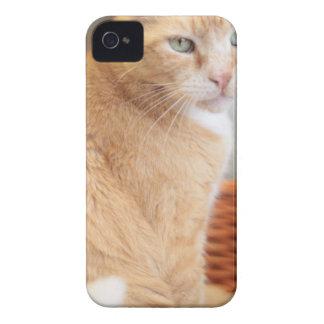 Claude Case-Mate iPhone 4 Case