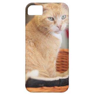 Claude iPhone SE/5/5s Case