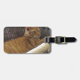 Claude is a Basket Case Tag For Luggage