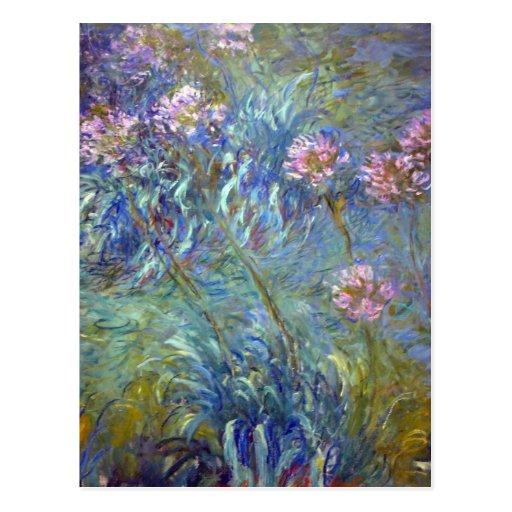 Claude Monet Agapanthus Post Card