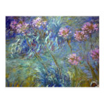 Claude Monet Agapanthus Postcard