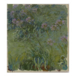 Claude Monet - Agapanthus Posters