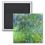 Claude Monet: Agapanthus Refrigerator Magnet