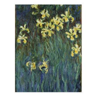 Claude Monet - iris amarillos Tarjeta Postal