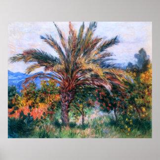 Claude Monet: Palmera en Bordighera Póster