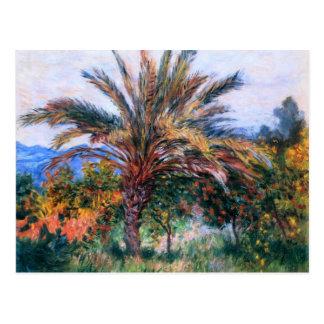 Claude Monet: Palmera en Bordighera Tarjeta Postal