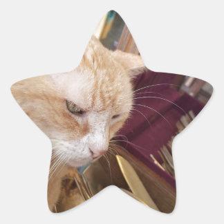 Claude Star Sticker