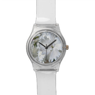 Clavel blanco relojes de pulsera