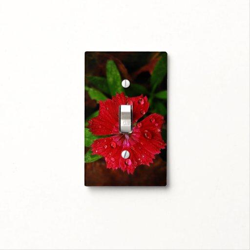 Clavel rojo con las gotas de agua tapas para interruptores