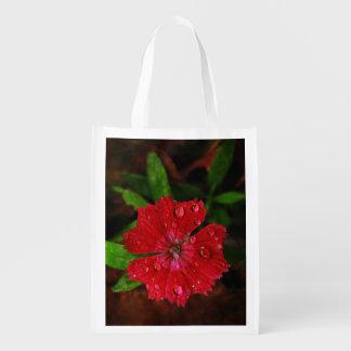 Clavel rojo con las gotas de agua bolsas de la compra