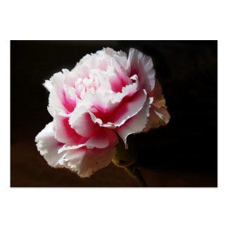 Clavel rosado Artcard ACEO Tarjeta De Visita