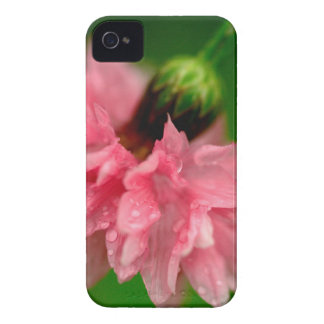 Clavel rosado funda para iPhone 4 de Case-Mate