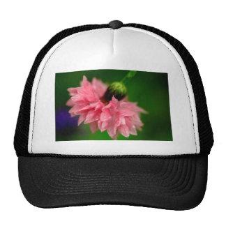 Clavel rosado gorras de camionero