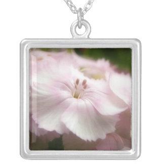 Clavel rosado suave Barbatus Joyeria Personalizada