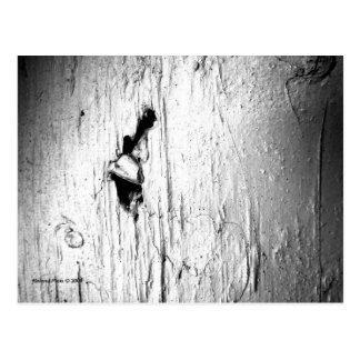 Clavo macro de B&W en la postal de madera