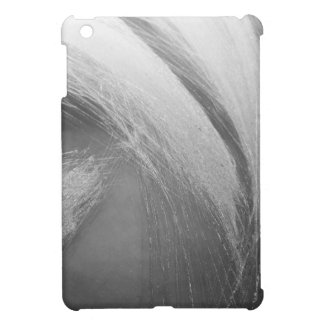 Claw iPad Mini Cases