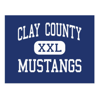 Clay County Mustangs Middle Clay Post Card