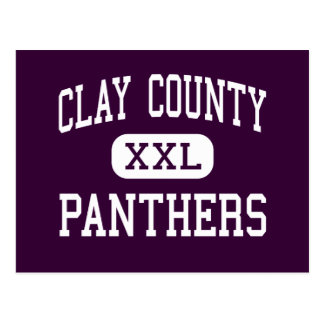 Clay County - Panthers - High - Ashland Alabama Postcard