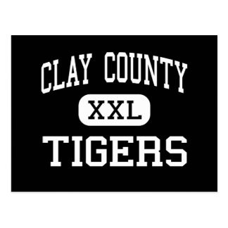 Clay County - Tigers - High - Manchester Kentucky Post Card