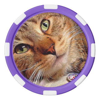 """Clay Poker Chips - """"Green Eyed Kitty"""" by SnapDaddy"""