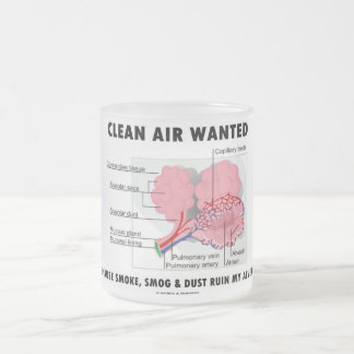 Clean Air Wanted Because Smoke Smog Dust Ruin My Frosted Glass Coffee Mug