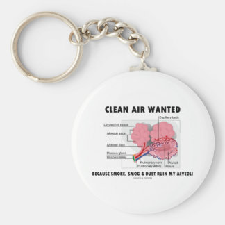 Clean Air Wanted Because Smoke Smog Dust Ruin My Keychains