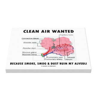 Clean Air Wanted Health & Medicine Alveoli Humor Canvas Print