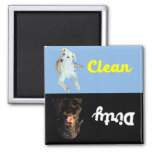 Clean -Dirty Dishwasher Magnet