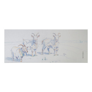'Clear Air' Goat Drawing Poster