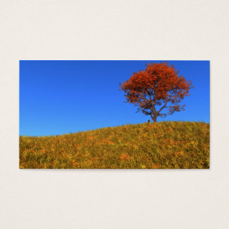 Clear Autumn Day Bookmarks Business Card