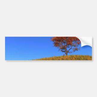 Clear Autumn Day Bumper Sticker