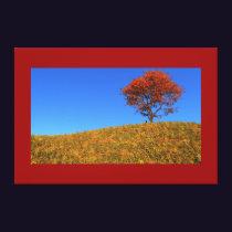 Clear Autumn Day Canvas Print