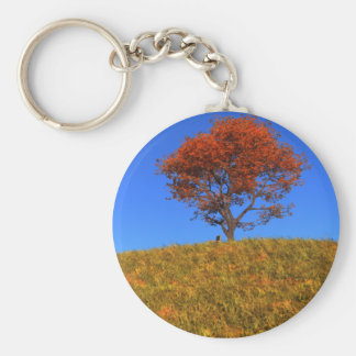 Clear Autumn Day Keychain